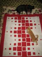 Square Quilt Tutorial by Shana Schasteen from 9 Stitches